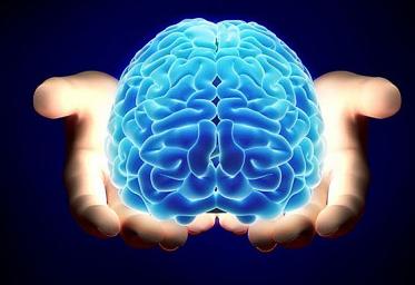 Neurociencias y Neuroherramientas